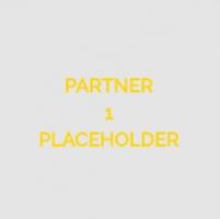 Partner 1 (external)