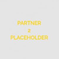 Partner 2 (external)